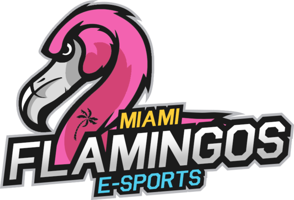 Miami Flamingos