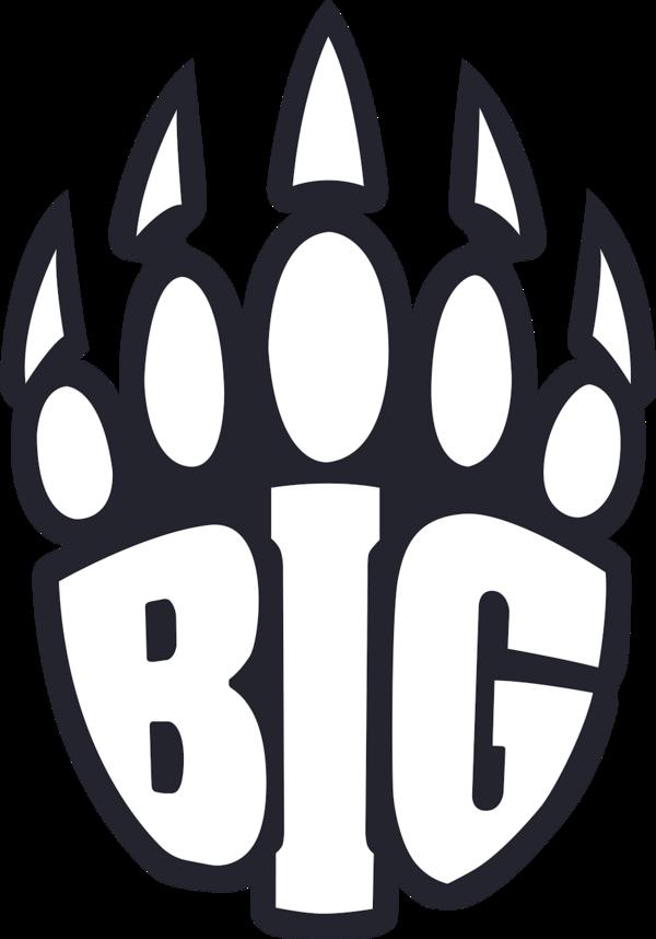 BIG (counterstrike)