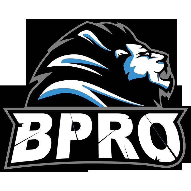 BPro (counterstrike)