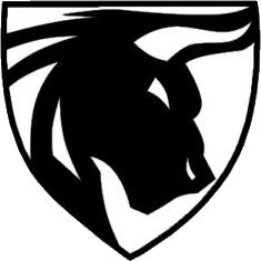 Bull (counterstrike)