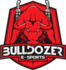 Bulldozer e-Sports (counterstrike)