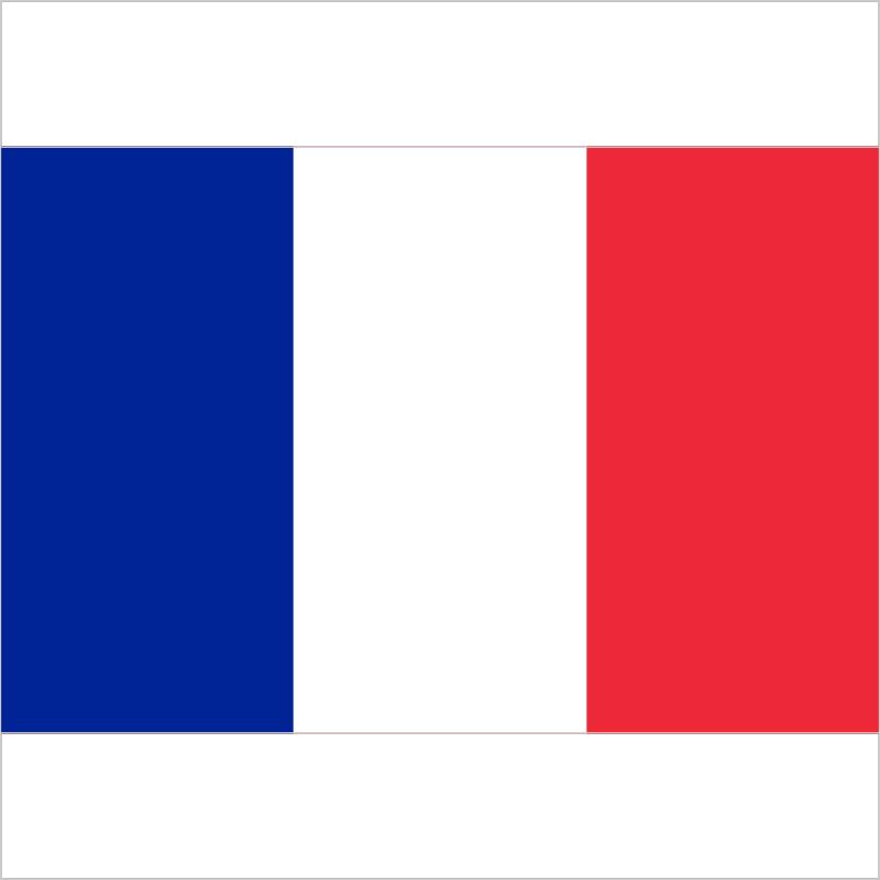 France fe (counterstrike)