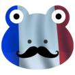 FrenchFrogs (counterstrike)