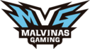 Malvinas Gaming (counterstrike)