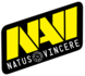 NaVi Junior (counterstrike)