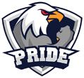 Pride Gaming (counterstrike)