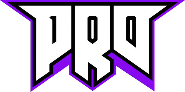pro100 (counterstrike)