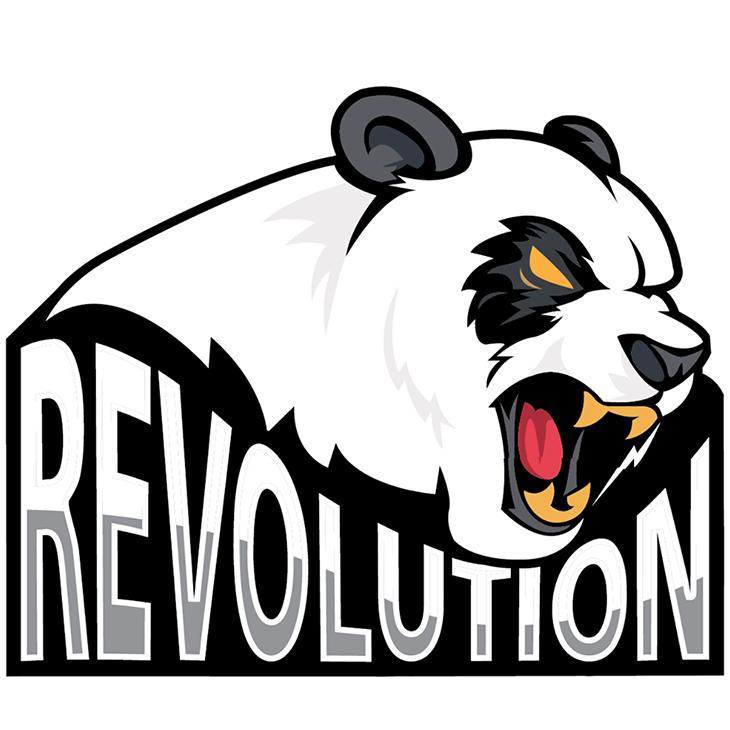 Revolution (counterstrike)