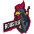 Rooster (counterstrike)
