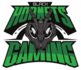 Black Hornets Gaming (dota2)