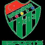 Bursaspor Esports (dota2)