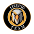 LieYING Team (dota2)