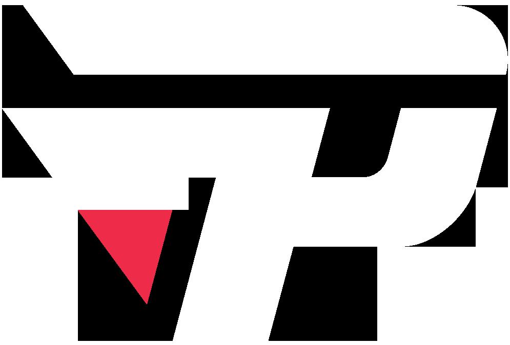 paiN X (dota2)