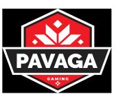 Pavaga Gaming (dota2)