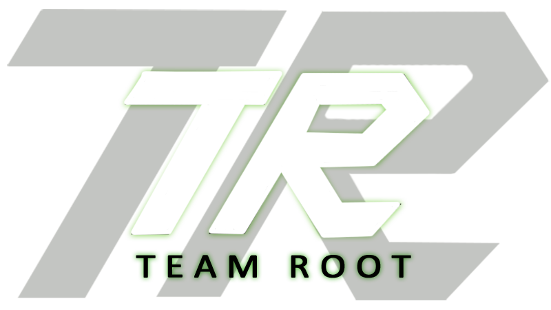 Team Root (dota2)