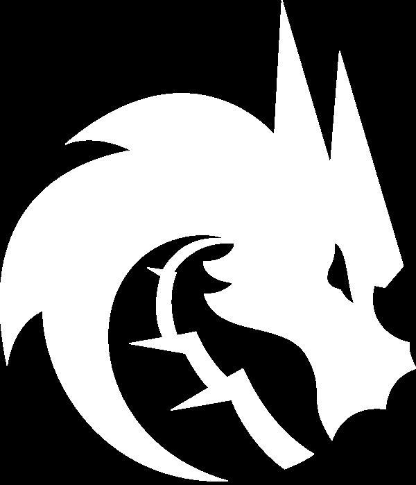 Team Spirit (dota2)