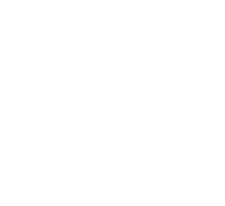 TEAM TEAM (dota2)