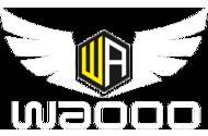 Team Waooo (dota2)