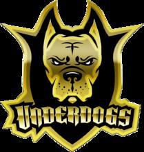 Underdogs (dota2)