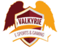 Valkyrie eSports Gaming