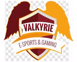 Valkyrie eSports Gaming