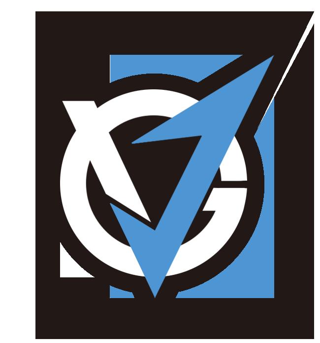 VGJ.Storm (dota2)