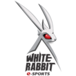 White Rabbit Gaming (dota2)