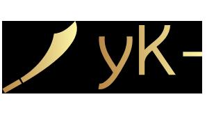 Yolo Knight (dota2)
