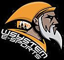 wSystem e-Sports Club