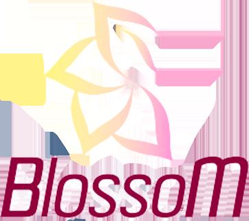 BlossoM (heroesofthestorm)