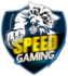 Speed Gaming (heroesofthestorm)