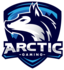 Arctic Gaming Mexico (lol)
