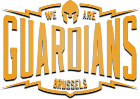 Brussels Guardians (lol)