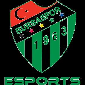 Bursaspor Esports (lol)