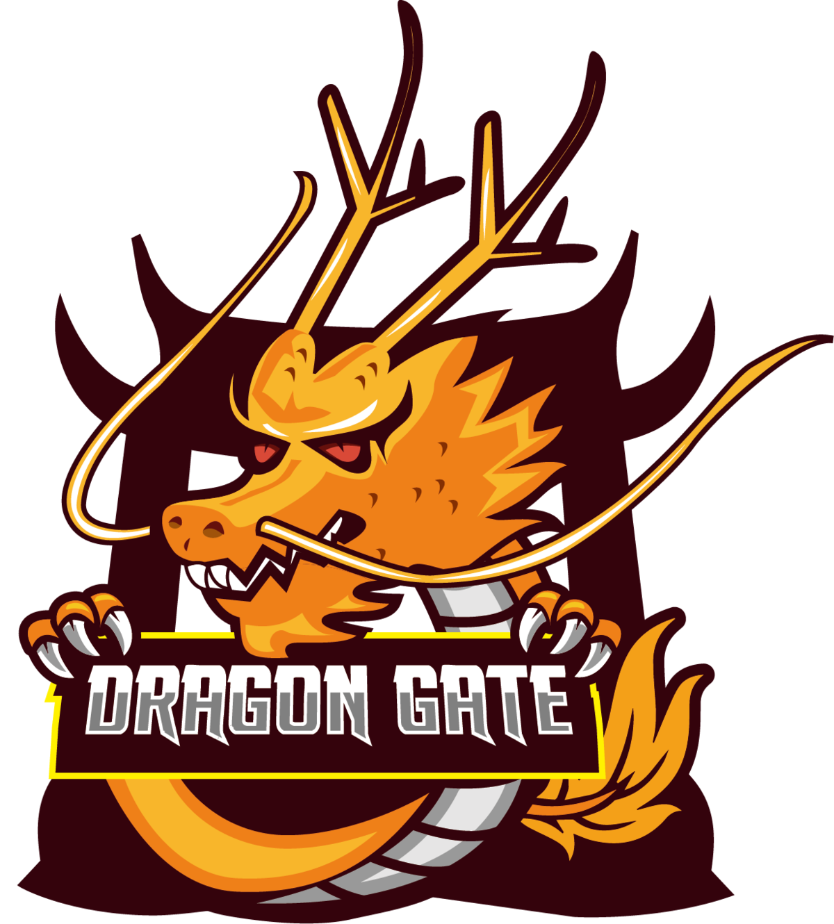 Dragon Gate Team (lol)