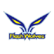 Flash Wolves (overwatch)