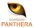 KongDoo Panthera (overwatch)