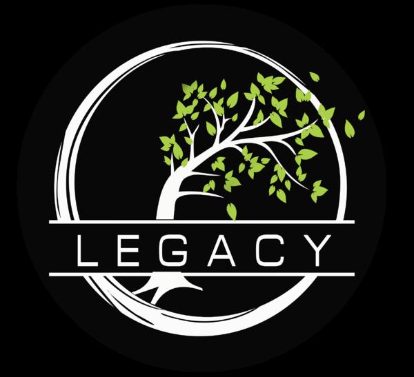 Legacy Esports (overwatch)