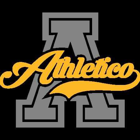 Athletico Esports (pubg)