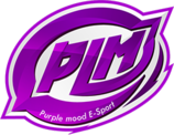 Purple Mood E-Sport (pubg)