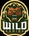 Wild Gaming (pubg)