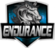 Endurance (rocketleague)