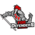 For Defenders eSports (rocketleague)