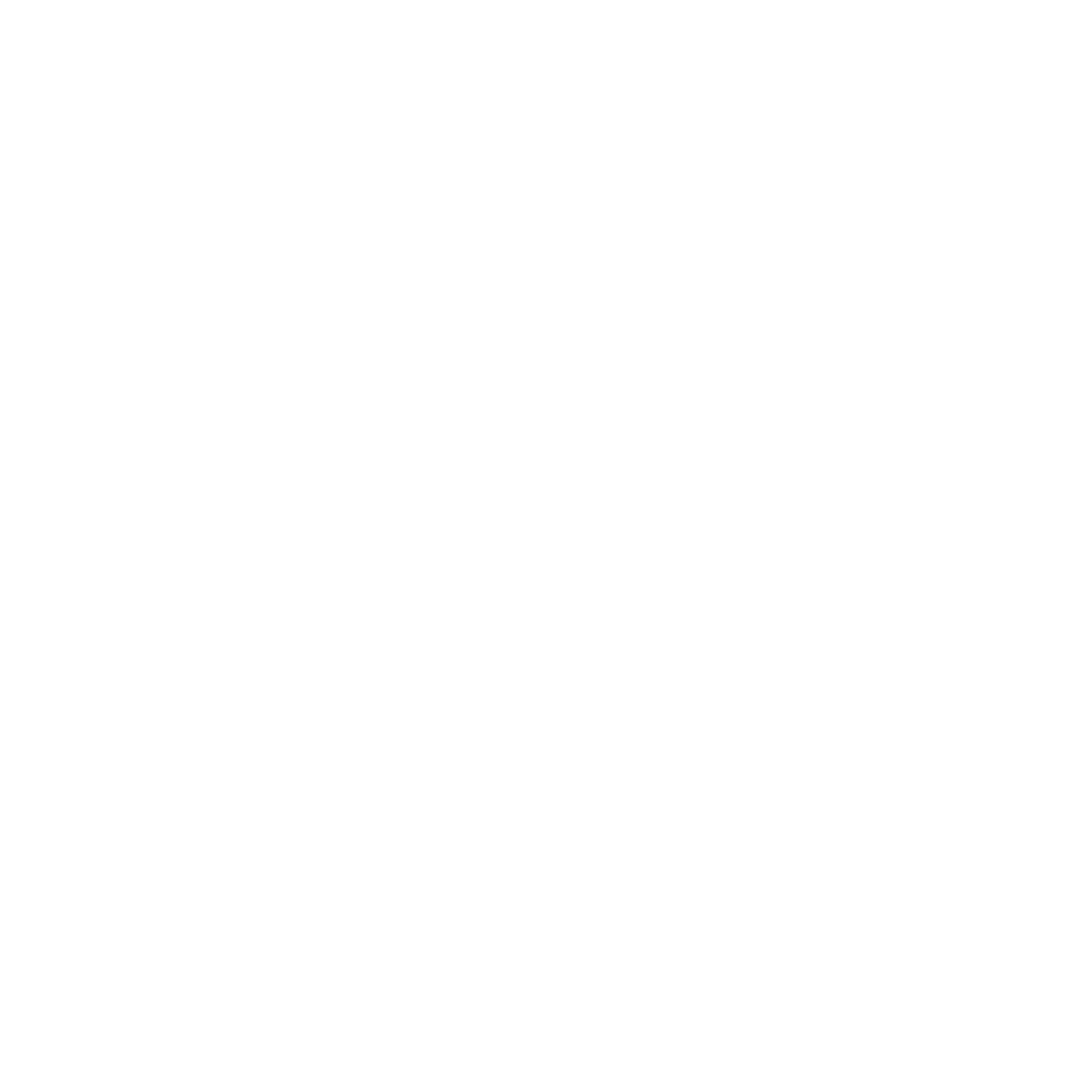 Team SoloMid (rocketleague)